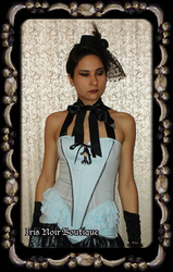 Lip Service Through the Looking Glass Steampunk Bustier Top